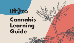 Cannabis Learning Guide